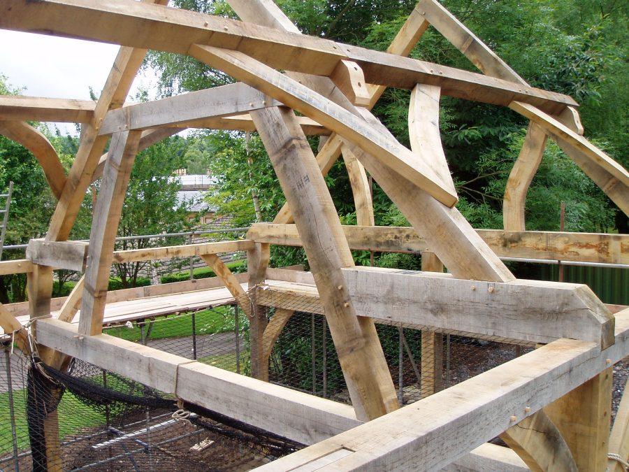 timber frame, carpenter, France, oak frame, green oak